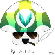 artist:DragonSych streamer:vinny v-dub vineshroom // 1000x1000 // 294.3KB